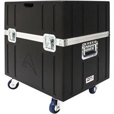 Axiom CASECX15A - Транспортировочный кейс для двух сценических мониторов CX15A
